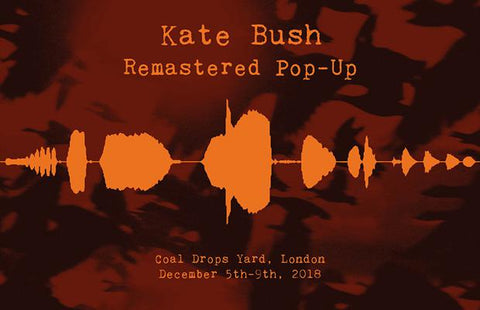 Kate Bush pop up shop