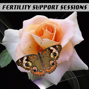 Fertility Support Sessions