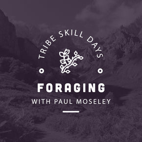 Foraging Tribe Skill Day - forestschools