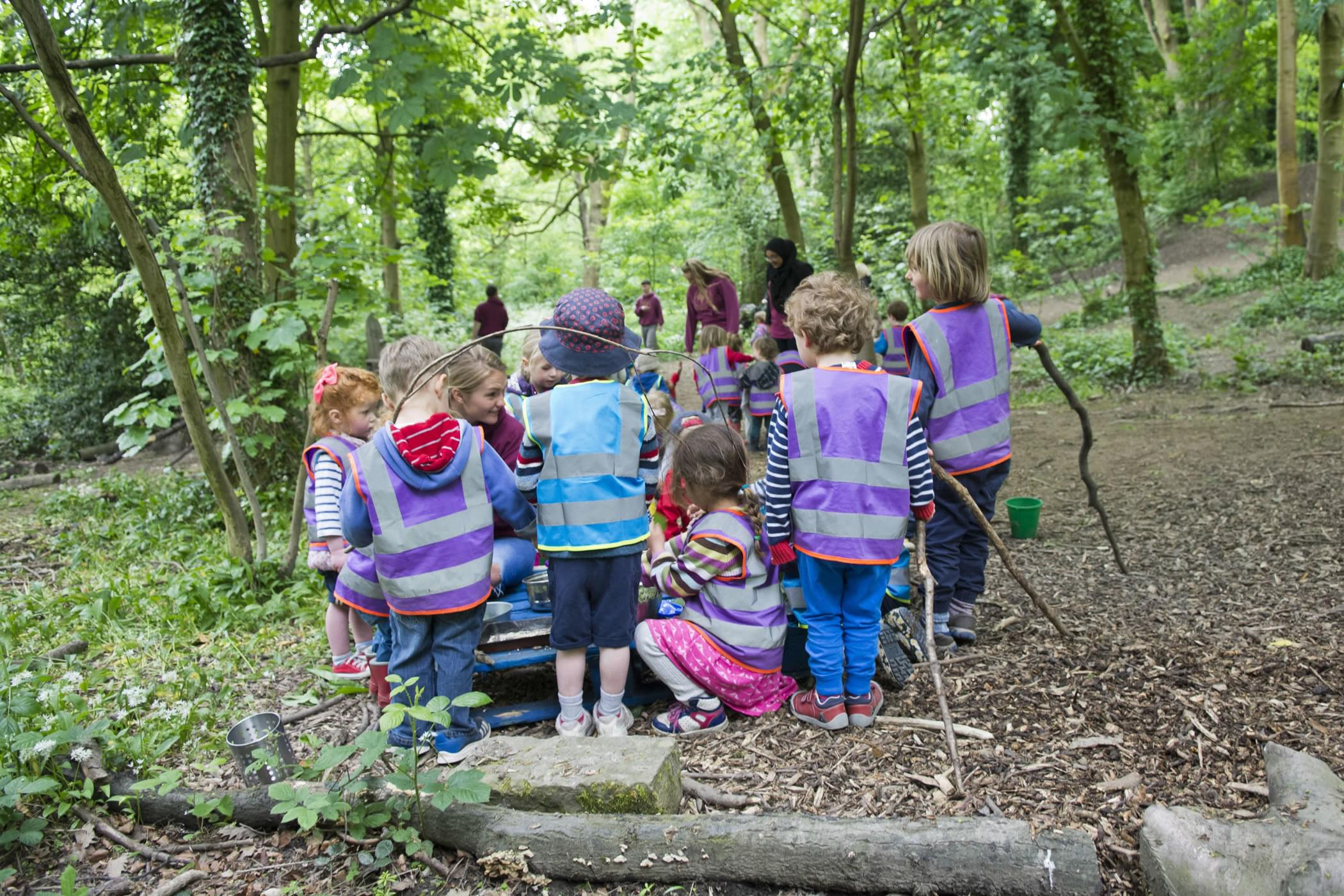 Setting Up A Forest School