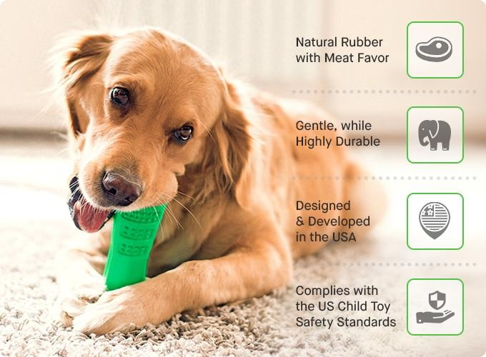 Bone Brush - Genius Dog Toothbrush