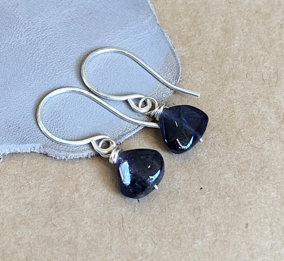 Dark Blue Iolite Triangle Earrings