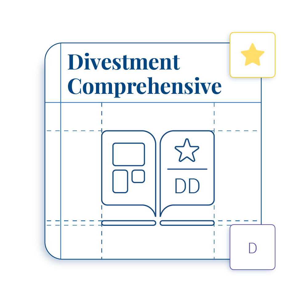 Divestment Playbook - Comprehensive