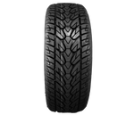 HS299 - High Performance (HP) - 295/35R24 110V XL