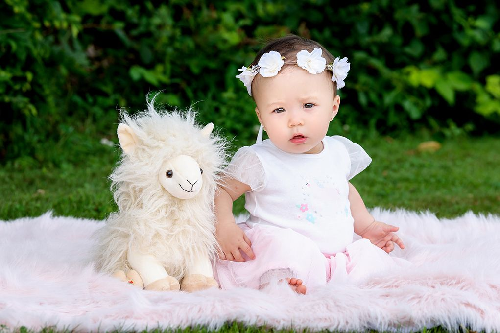 Packed Full of Love: The Alpaca Baby Trend is Too Cute!