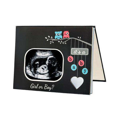 Audible Gender Reveal Frame