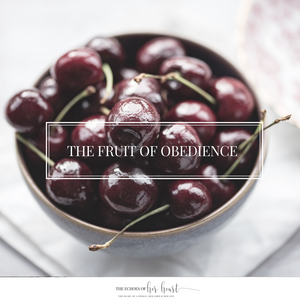 The Echoes of Her Heart blog post- The fruit of obedience