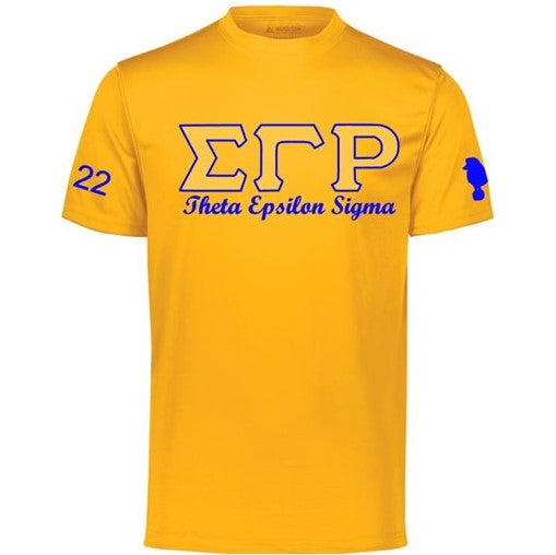 SGRho TES Gold Chapter T-shirt