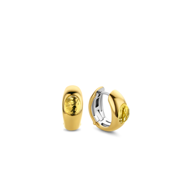 TI SENTO - Milano Earrings 7805TY