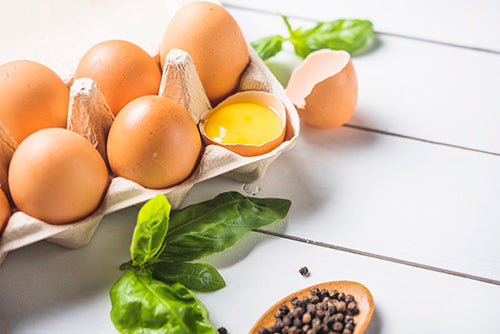 farm fresh eggs delivery, eggs delivery, bergen county