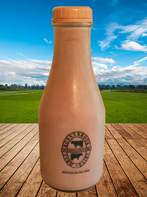 RonnyBrook Chocolate Milk 32 oz