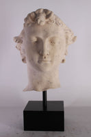 Stone David Head on Base Greek Roman Prop Resin Decor - LM Treasures