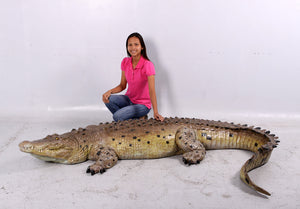 Crocodile Life Size Statue - LM Treasures Life Size Statues & Prop Rental
