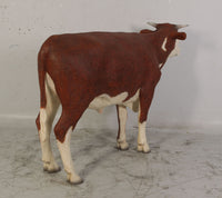 Hereford Steer Cow Life Size Statue - LM Treasures Life Size Statues & Prop Rental