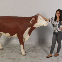 Hereford Steer Cow Life Size Statue - LM Treasures
