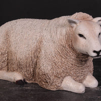Laying Texelaar Lamb Life Size Statue - LM Treasures