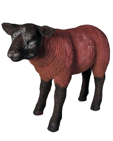 Brown Texelaar Lamb Life Size Statue - LM Treasures