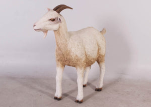Cream Goat Life Size Statue - LM Treasures Life Size Statues & Prop Rental