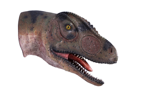 Allosaurus Dinosaur Head Mouth Open Life Size Statue - LM Treasures Life Size Statues & Prop Rental