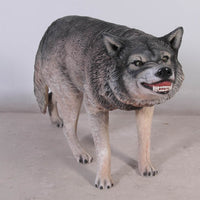 Growling Wolf Life Size Statue - LM Treasures Life Size Statues & Prop Rental