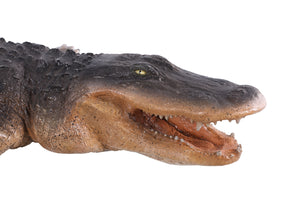 American Alligator Reptile Prop Life Size Decor Resin Statue - LM Treasures