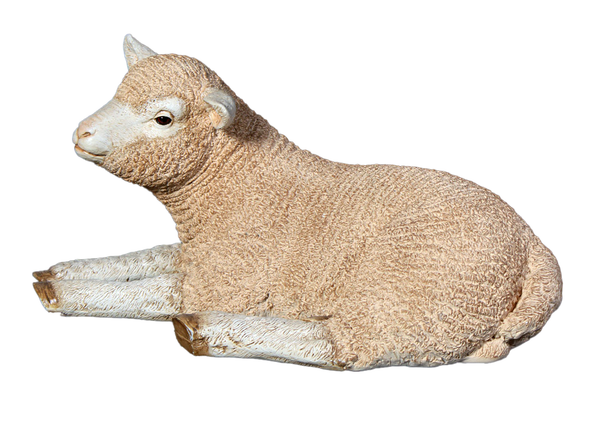 Laying Merino Lamb Life Size Statue - LM Treasures