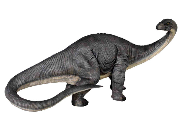Baby Apatosaurus Dinosaur Life Size Statue - LM Treasures Life Size Statues & Prop Rental
