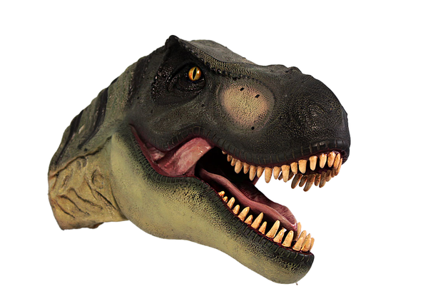 T-Rex Dinosaur Head Small Life Size Statue - LM Treasures Life Size Statues & Prop Rental