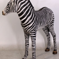 Baby Zebra Foal Life Size Statue - LM Treasures Life Size Statues & Prop Rental
