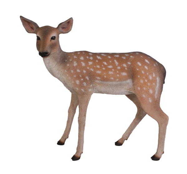 Fawn Fallow Deer Life Size Statue - LM Treasures Life Size Statues & Prop Rental