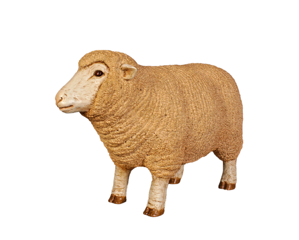 Baby Merino Ewe Life Size Statue - LM Treasures Life Size Statues & Prop Rental