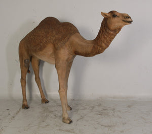 Camel Standing Large Nativity Prop Life Size Resin Statue