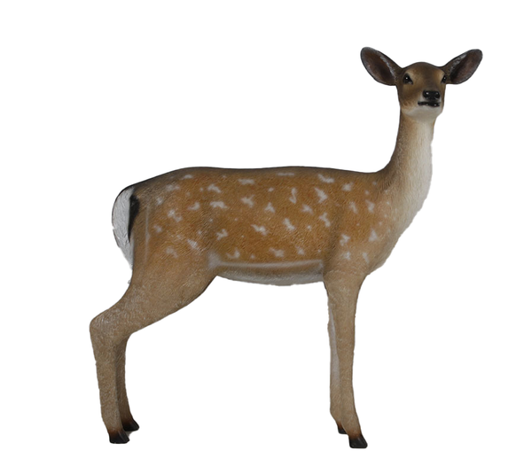 Doe Fallow Deer Life Size Statue - LM Treasures Life Size Statues & Prop Rental