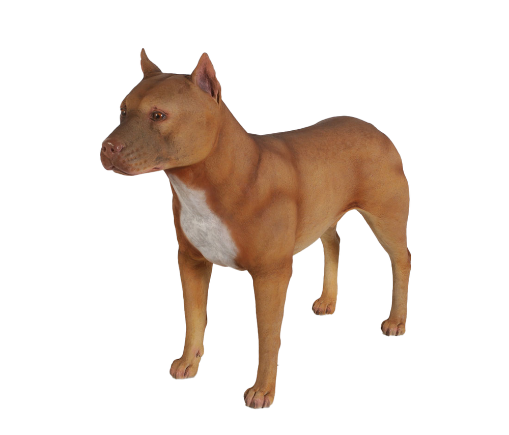 Male Pitbull Life Size Statue - LM Treasures