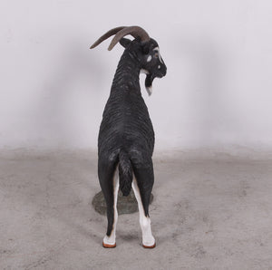 Black Billy Goat Life Size Statue - LM Treasures