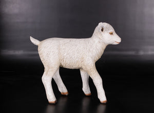 Baby Goat Life Size Statue - LM Treasures Life Size Statues & Prop Rental