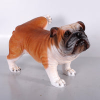 Bulldog Peeing Life Size Statue - LM Treasures