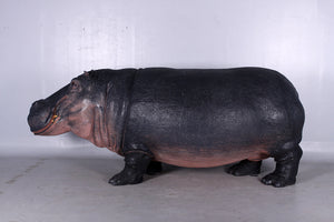 Hippo Life Size Statue - LM Treasures Life Size Statues & Prop Rental