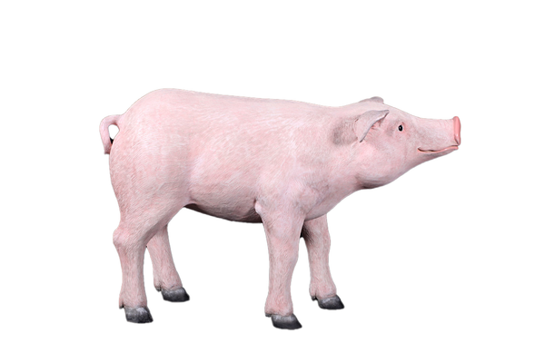 Baby Pig Standing Life Size Statue - LM Treasures Life Size Statues & Prop Rental