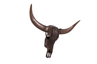 Bronze Bull Skull Life Size Statue - LM Treasures Life Size Statues & Prop Rental