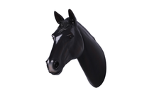 Black Horse Head Life Size Statue - LM Treasures Life Size Statues & Prop Rental