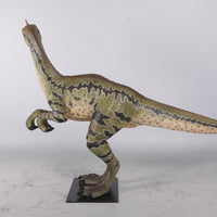 Dilong Paradoxus Dinosaur Life Size Statue - LM Treasures Life Size Statues & Prop Rental