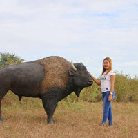 Buffalo Bison Animal Prop Life Size Decor Resin Statue - LM Treasures Life Size Statues & Prop Rental