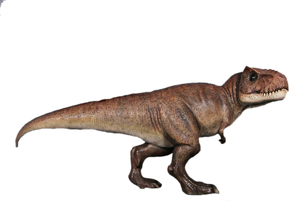 T Rex Dinosaur Life Size Statue - LM Treasures Life Size Statues & Prop Rental