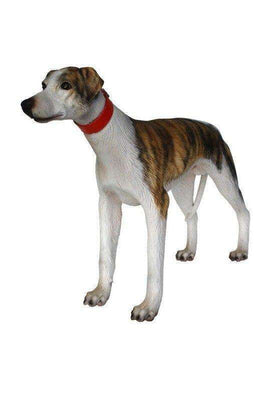Dog Whippet  Animal Prop Life Size Deecor  Resin Statue - LM Treasures Life Size Statues & Prop Rental