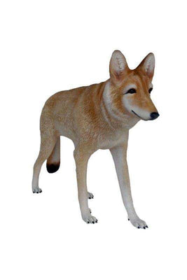 Dog Wild Coyote  Animal Prop Life Size Deecor  Resin Statue- LM Treasures