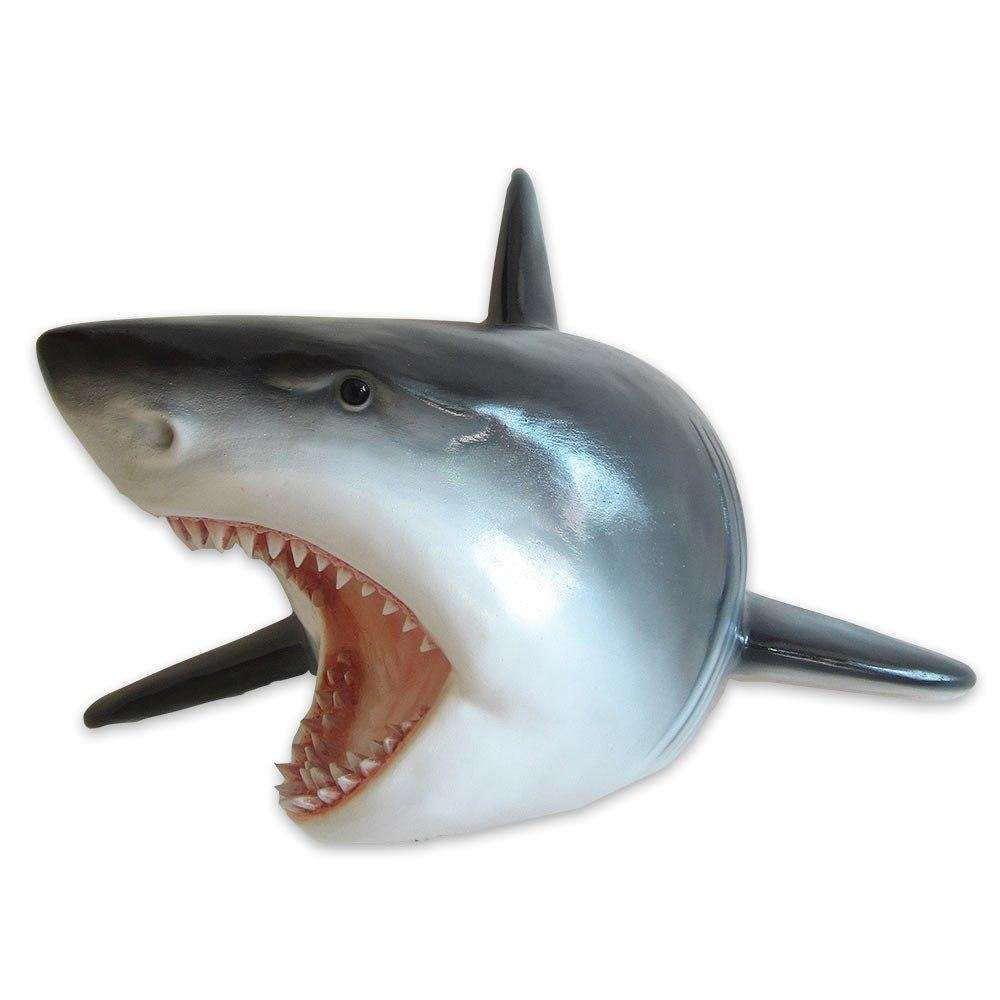 Small Great White Shark Head Life Size Statue - LM Treasures Life Size Statues & Prop Rental