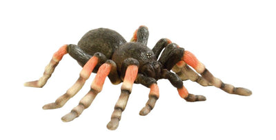 Spider - LM Treasures Life Size Statues & Prop Rental