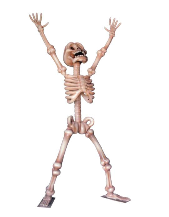 Skeleton Happy - LM Treasures Life Size Statues & Prop Rental