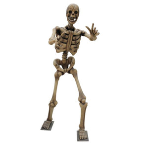Skeleton Arms out - LM Treasures Life Size Statues & Prop Rental